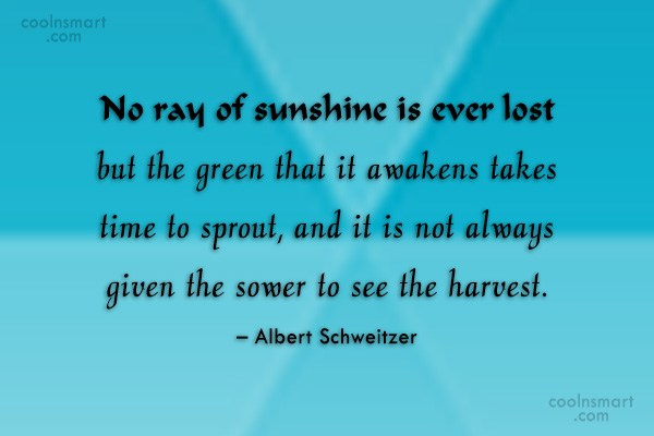 Time Quote: No ray of sunshine is ever lost...