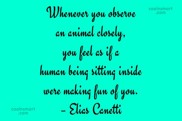 Pets Quote: Whenever you observe an animal closely, you...