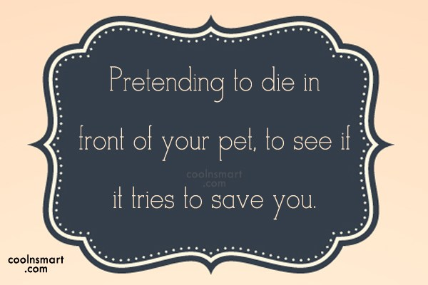 Pets Quote: Pretending to die in front of your...