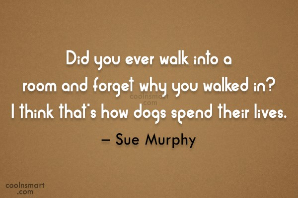 Dogs Quote: Did you ever walk into a room...