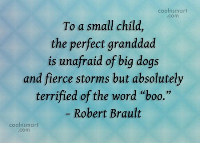 Grandfather Quote: To a small child, the perfect granddad...