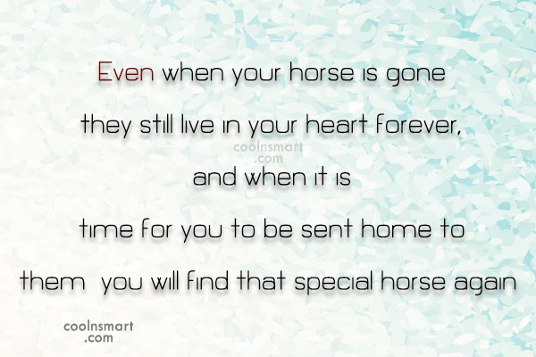 Horse Quote: Even when your horse is gone they...