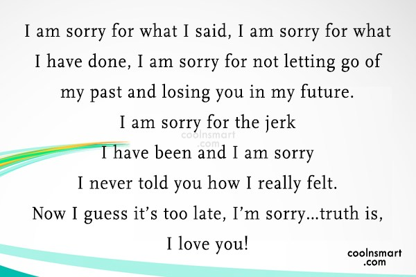 Sorry Quote: I am sorry for what I said,...
