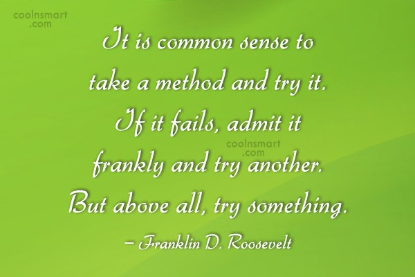 Effort Quote: It is common sense to take a...